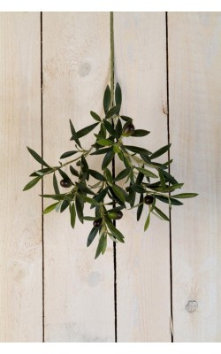 [DECO] Les plus jolis modèles de plantes en plastique