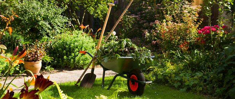 Contre l 39 ennui initiez vous au jardinage for Jardin et jardinage